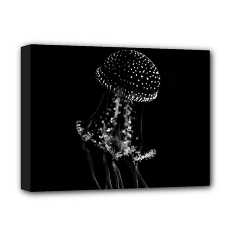 Jellyfish Underwater Sea Nature Deluxe Canvas 16  X 12
