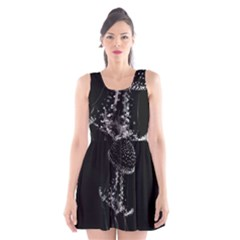 Jellyfish Underwater Sea Nature Scoop Neck Skater Dress