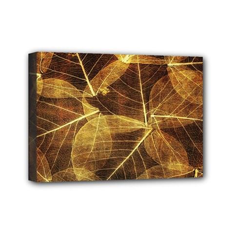 Leaves Autumn Texture Brown Mini Canvas 7  X 5