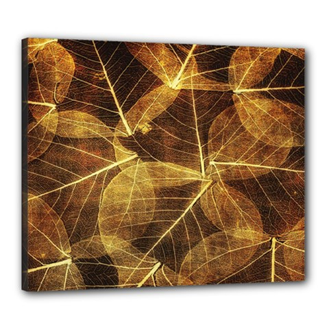 Leaves Autumn Texture Brown Canvas 24  X 20