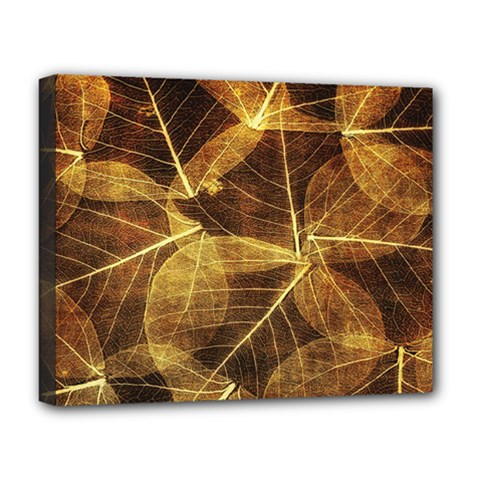 Leaves Autumn Texture Brown Deluxe Canvas 20  X 16