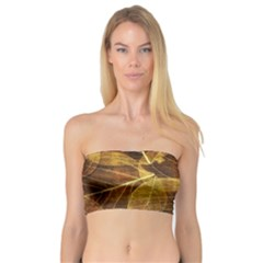 Leaves Autumn Texture Brown Bandeau Top