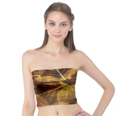 Leaves Autumn Texture Brown Tube Top