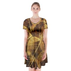 Leaves Autumn Texture Brown Short Sleeve V Neck Flare Dress