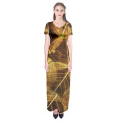 Leaves Autumn Texture Brown Short Sleeve Maxi Dress