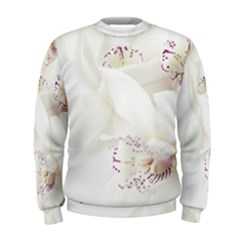 Orchids Flowers White Background Men s Sweatshirt