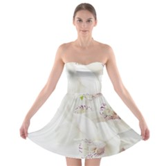Orchids Flowers White Background Strapless Bra Top Dress