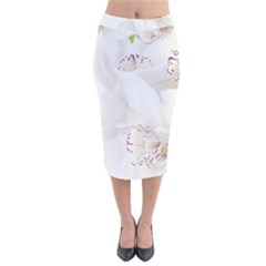 Orchids Flowers White Background Velvet Midi Pencil Skirt