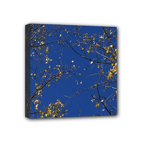 Poplar Foliage Yellow Sky Blue Mini Canvas 4  x 4