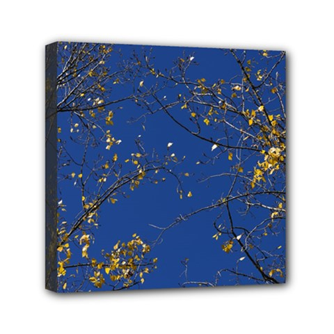 Poplar Foliage Yellow Sky Blue Mini Canvas 6  X 6