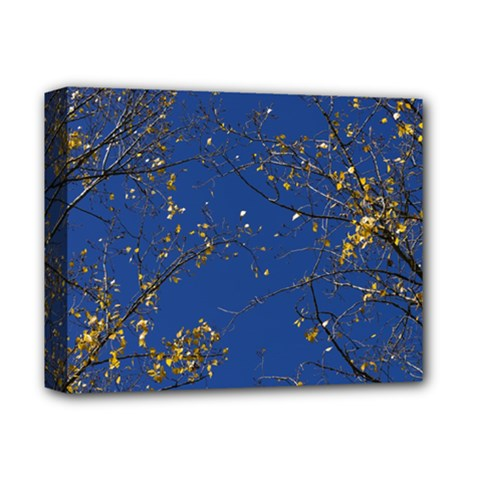 Poplar Foliage Yellow Sky Blue Deluxe Canvas 14  X 11