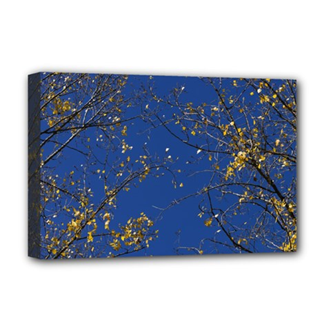 Poplar Foliage Yellow Sky Blue Deluxe Canvas 18  X 12