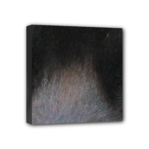 black to gray fade Mini Canvas 4  x 4  (Stretched)