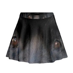 Newfoundland Black Eyes Mini Flare Skirt