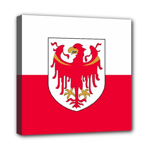 Flag of South Tyrol Mini Canvas 8  x 8