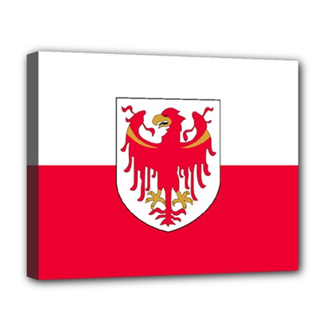Flag of South Tyrol Deluxe Canvas 20  x 16