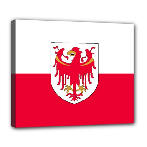Flag of South Tyrol Deluxe Canvas 24  x 20