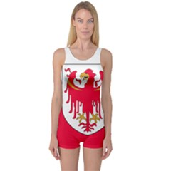 Flag of South Tyrol One Piece Boyleg Swimsuit