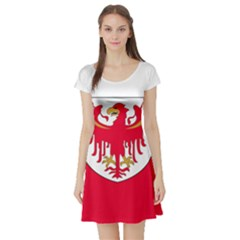 Flag of South Tyrol Short Sleeve Skater Dress