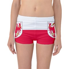 Flag of South Tyrol Boyleg Bikini Bottoms