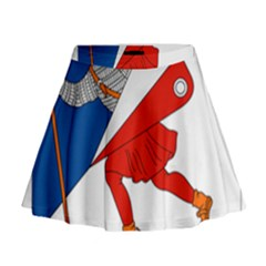 Lillehammer Coat of Arms  Mini Flare Skirt