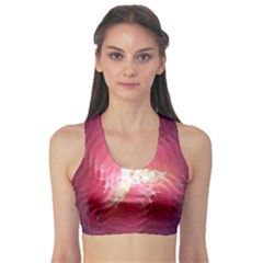 Fractal Red Sample Abstract Pattern Background Sports Bra