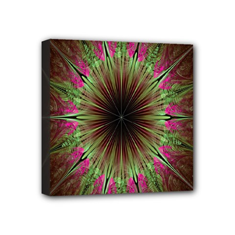 Julian Star Star Fun Green Violet Mini Canvas 4  X 4