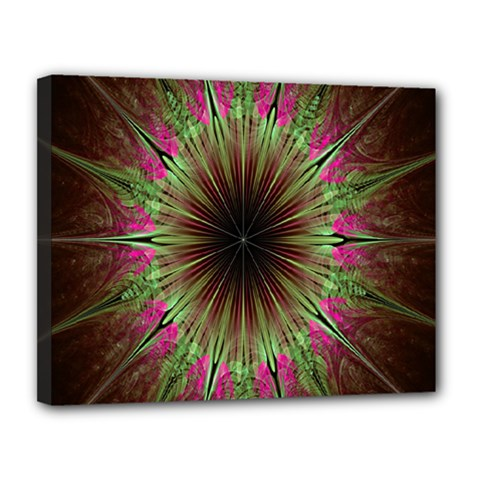 Julian Star Star Fun Green Violet Canvas 14  X 11