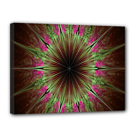 Julian Star Star Fun Green Violet Canvas 16  X 12