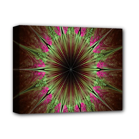 Julian Star Star Fun Green Violet Deluxe Canvas 14  X 11