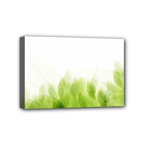 Green Leaves Pattern Mini Canvas 6  X 4