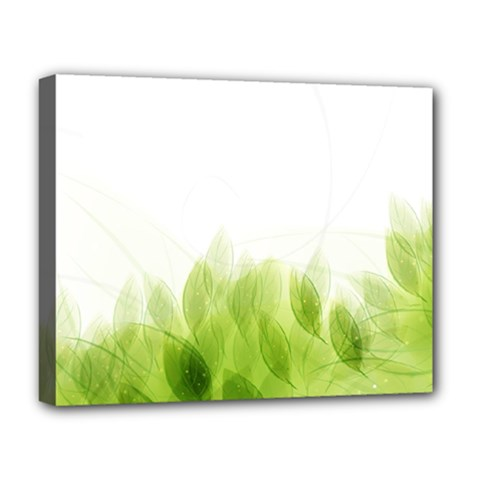 Green Leaves Pattern Deluxe Canvas 20  X 16