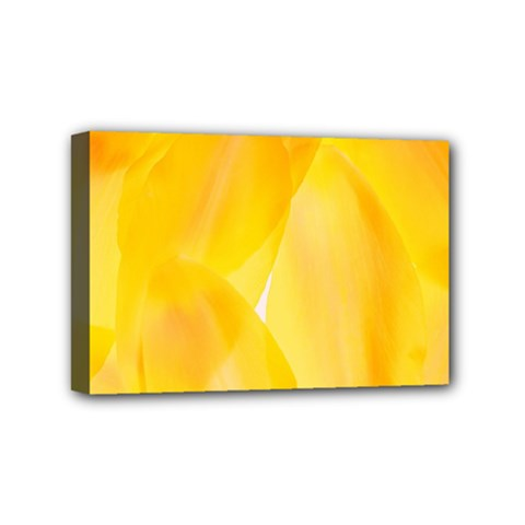 Yellow Pattern Painting Mini Canvas 6  X 4