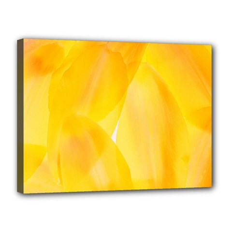 Yellow Pattern Painting Canvas 16  X 12