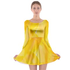 Yellow Pattern Painting Long Sleeve Skater Dress