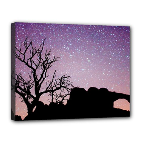 Arches National Park Night Canvas 14  X 11