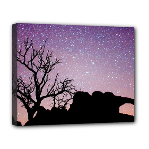 Arches National Park Night Deluxe Canvas 20  X 16