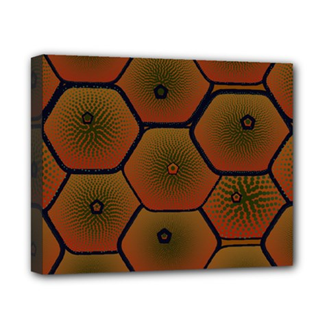 Art Psychedelic Pattern Canvas 10  x 8