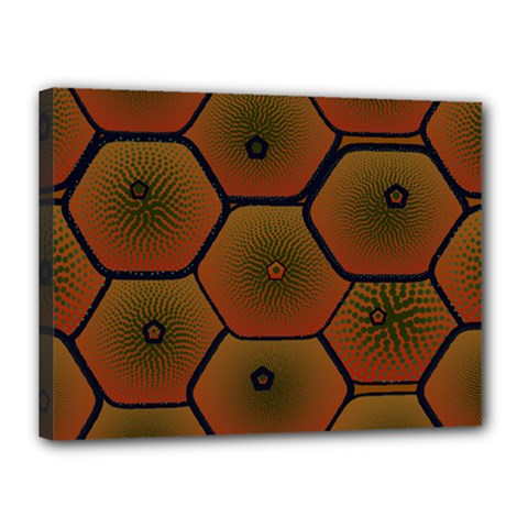 Art Psychedelic Pattern Canvas 16  X 12