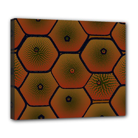 Art Psychedelic Pattern Deluxe Canvas 24  X 20