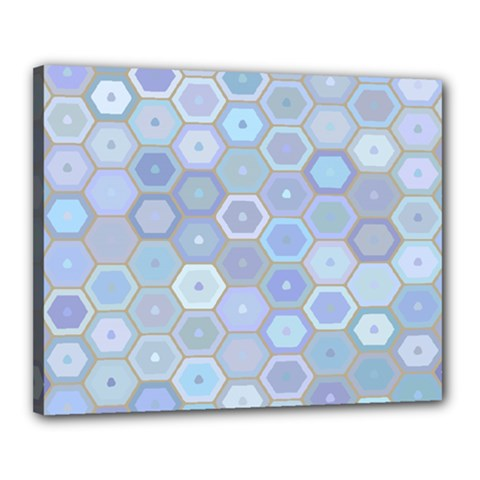 Bee Hive Background Canvas 20  X 16