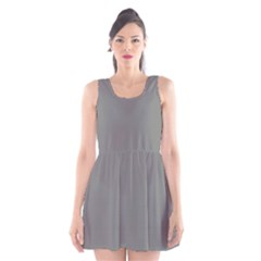 Color Grey Scoop Neck Skater Dress