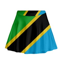 Flag Of Tanzania Mini Flare Skirt