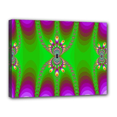 Green And Purple Fractal Canvas 16  X 12