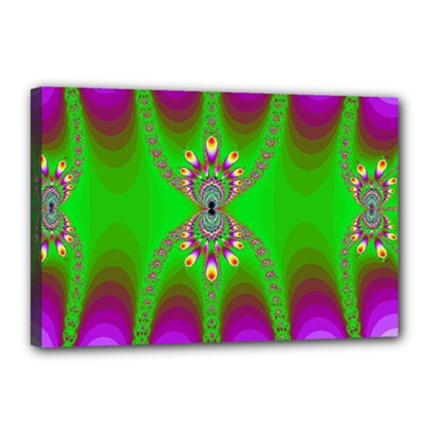 Green And Purple Fractal Canvas 18  X 12