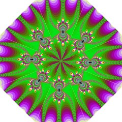 Green And Purple Fractal Folding Umbrellas