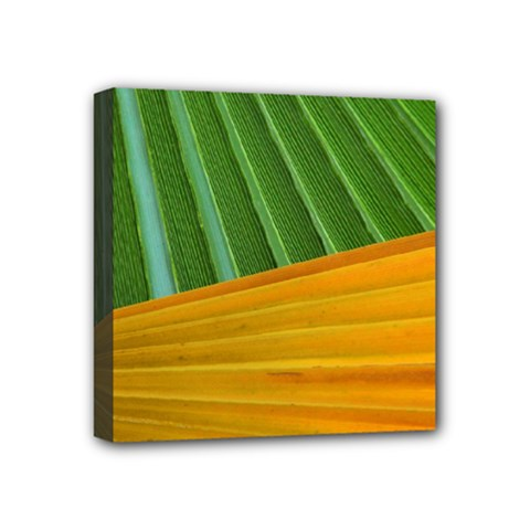 Pattern Colorful Palm Leaves Mini Canvas 4  X 4