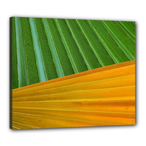Pattern Colorful Palm Leaves Canvas 24  X 20