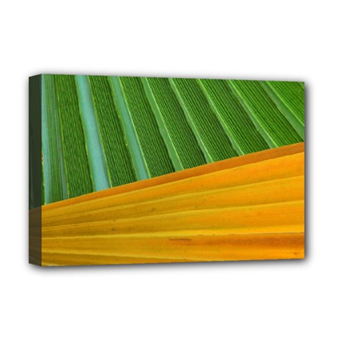 Pattern Colorful Palm Leaves Deluxe Canvas 18  X 12