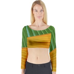 Pattern Colorful Palm Leaves Long Sleeve Crop Top